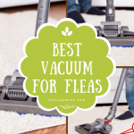 Best Vacuum for Fleas 2020 Reviews
