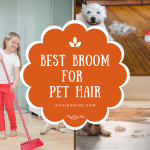 Top 5 Best Broom For Pet Hair In 2020