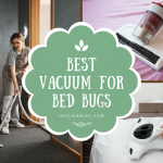 5 Best Vacuum For Bed Bugs | Buyer's Guide 2020